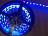 Светодиодная лента 300 led  SMD5050 5m 12v Синий